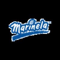 Logos-ip-kz-website-marinela